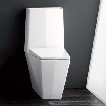 prix des toilettes monobloc