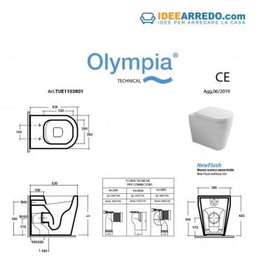 fiche technique wc dos à mur sans monture Tutto Evo Olympia