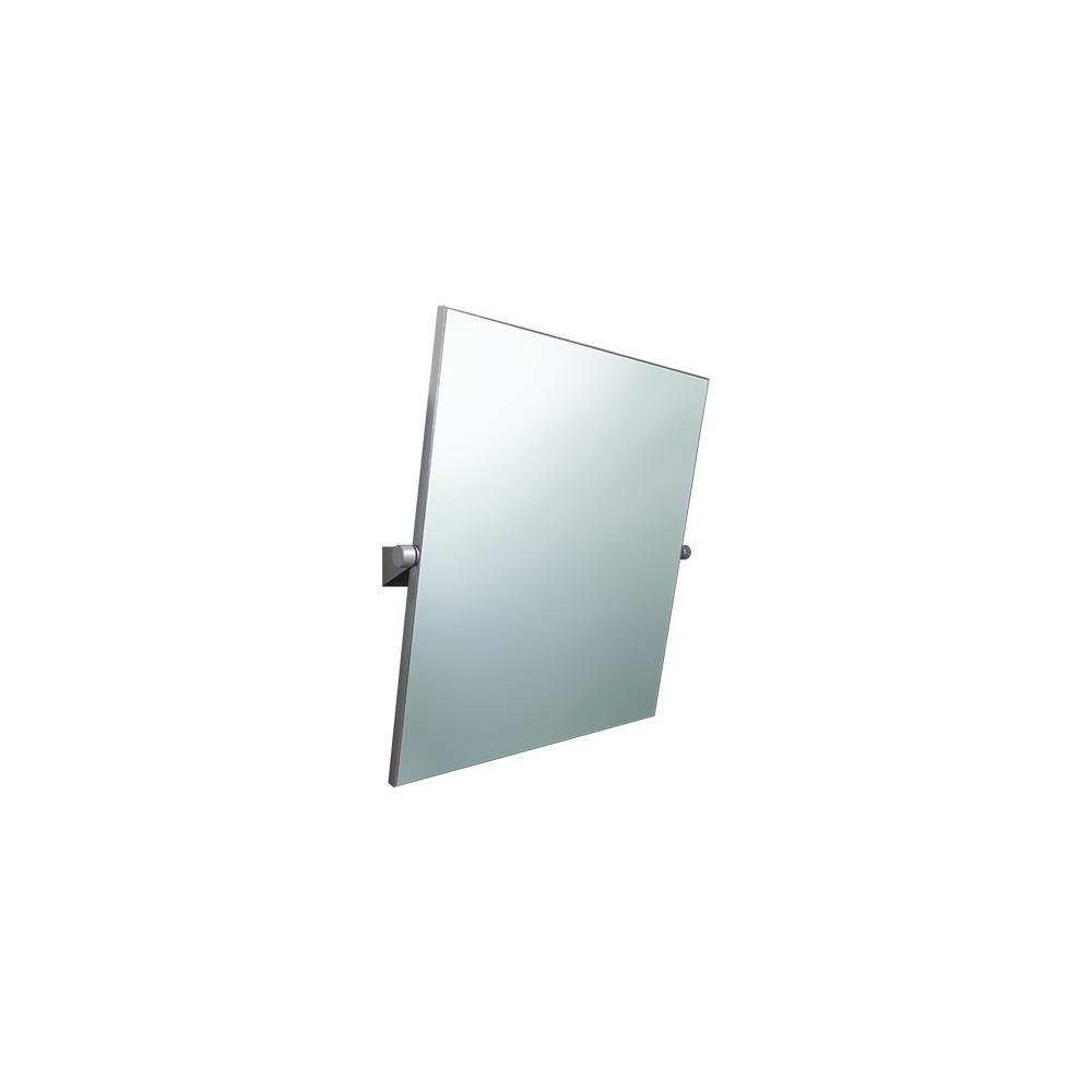 Specchio reclinabile disabili ItalSecure by Goman