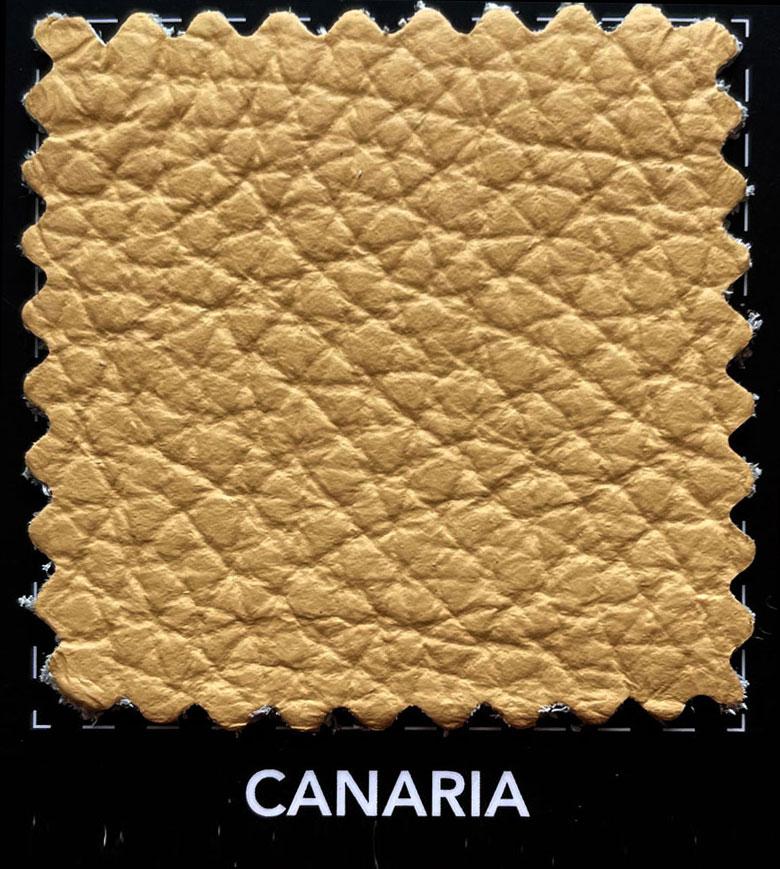 Pelle spessorata - CANARIA